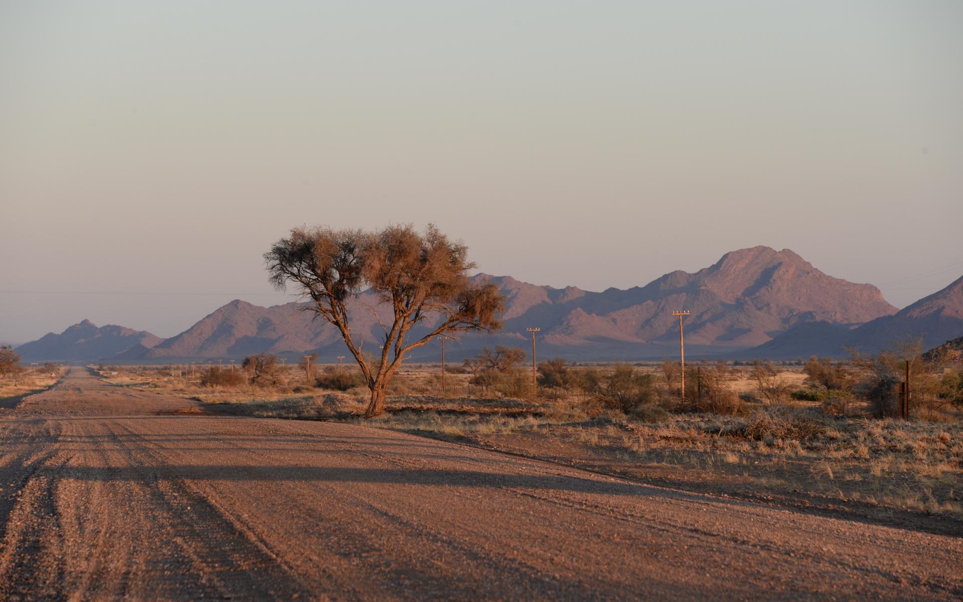 Namibia_Sossusvlei_Deadvlei_03