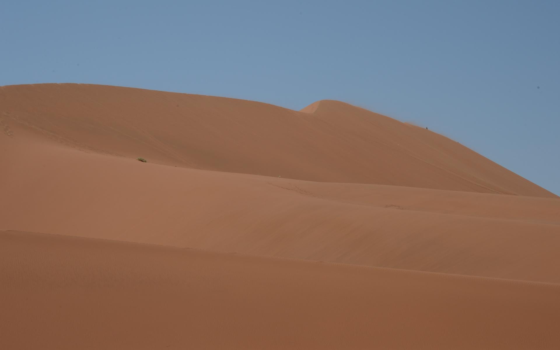 Namibia_Sossusvlei_Deadvlei_18