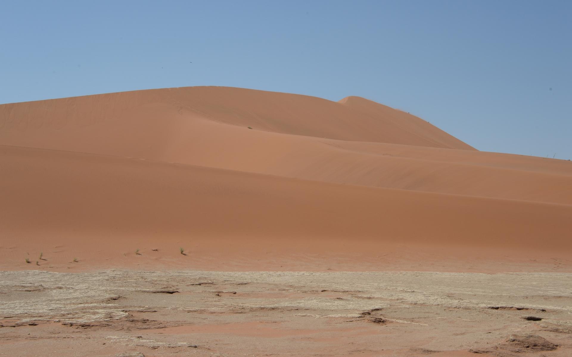 Namibia_Sossusvlei_Deadvlei_19