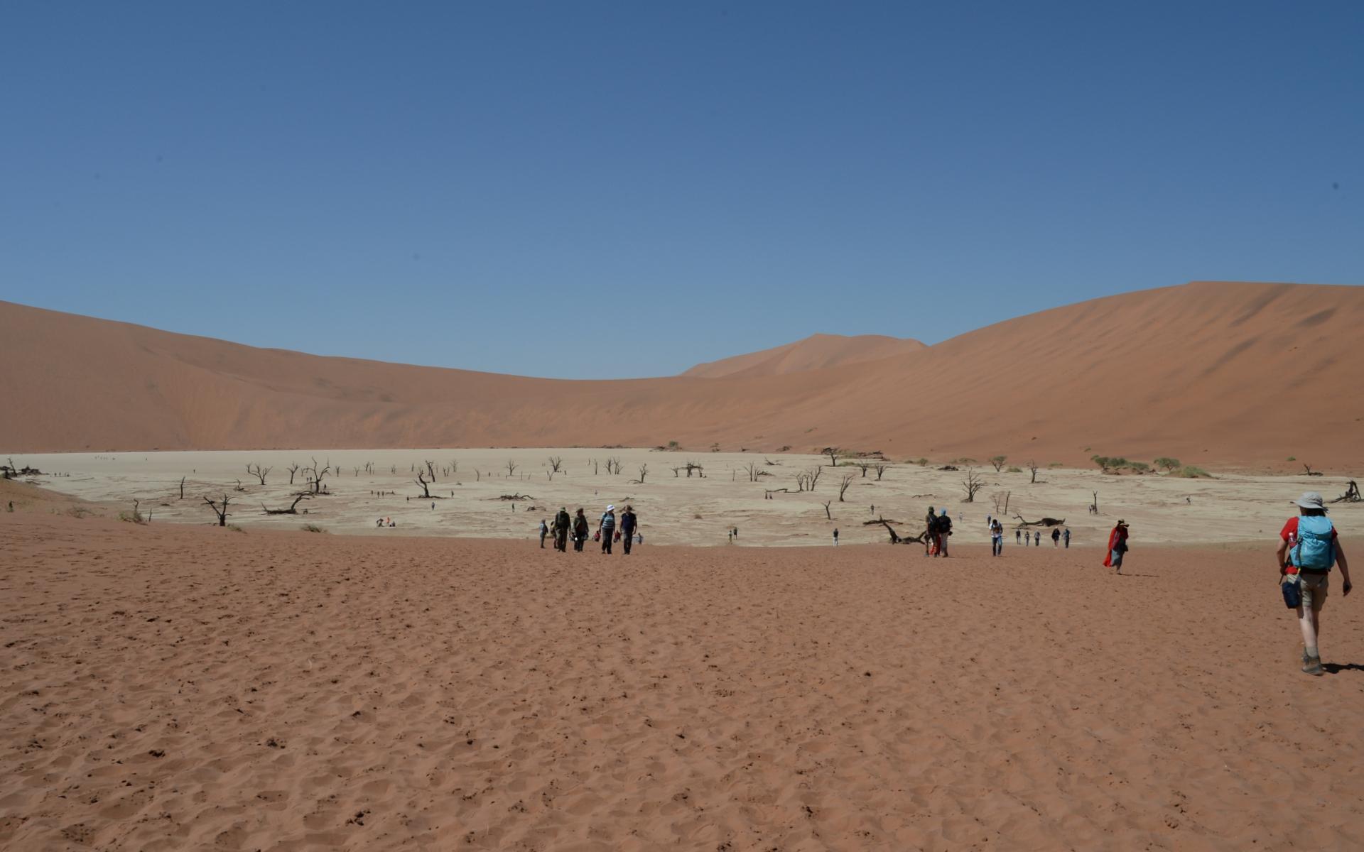 Namibia_Sossusvlei_Deadvlei_20