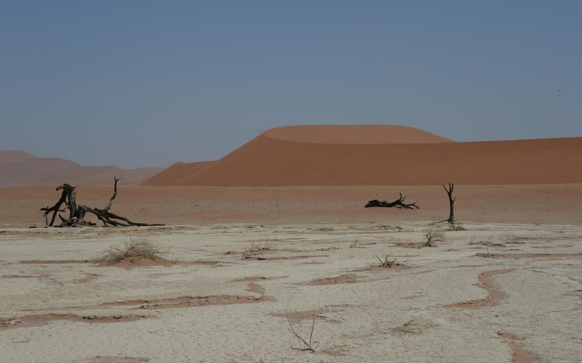 Namibia_Sossusvlei_Deadvlei_21