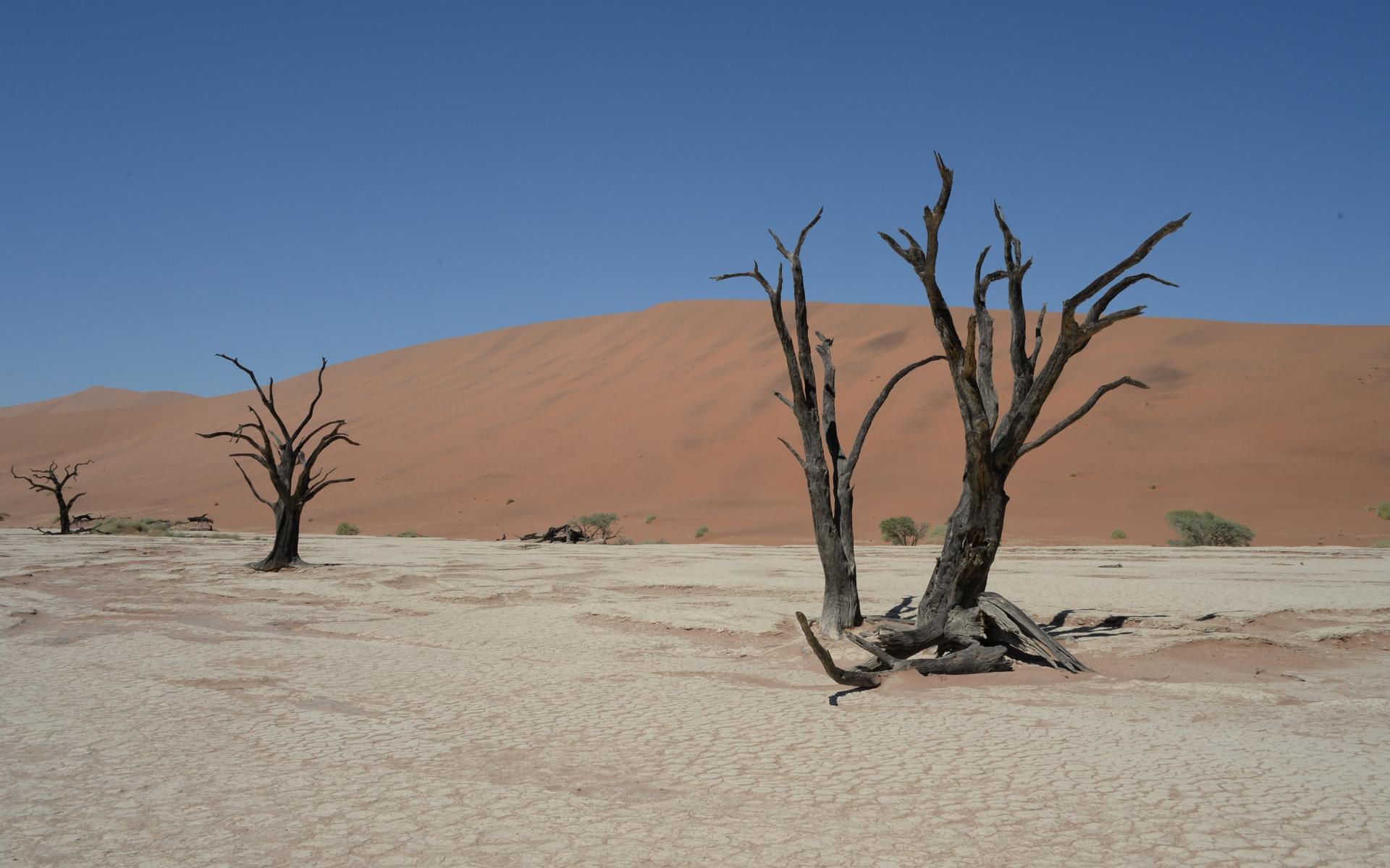 Namibia_Sossusvlei_Deadvlei_23