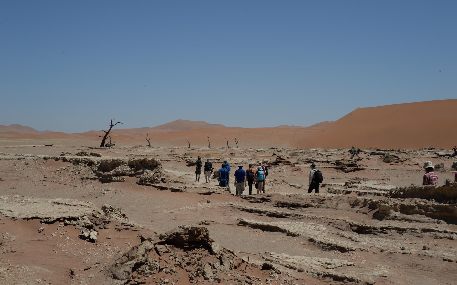 Namibia_Sossusvlei_Deadvlei_29