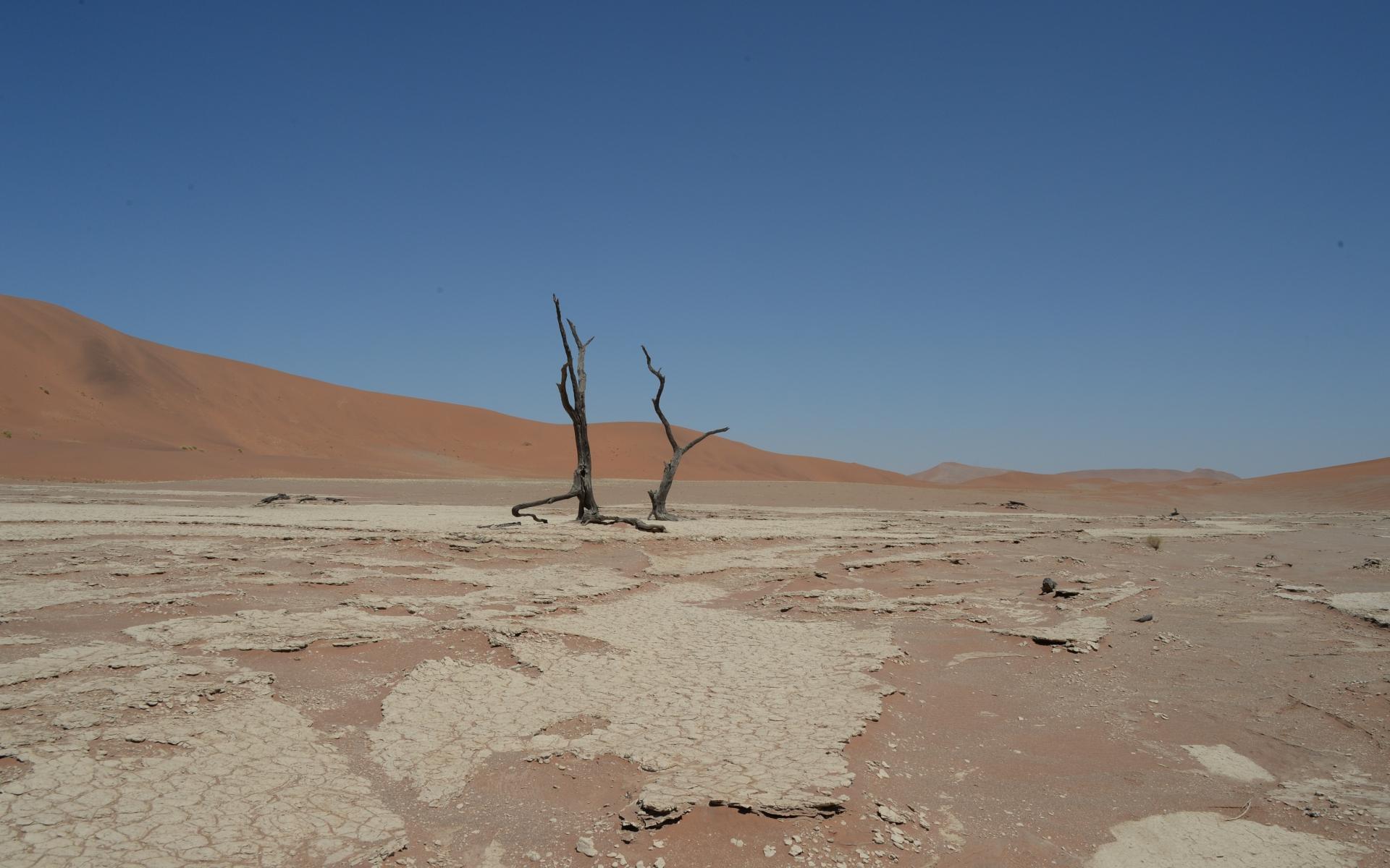 Namibia_Sossusvlei_Deadvlei_33