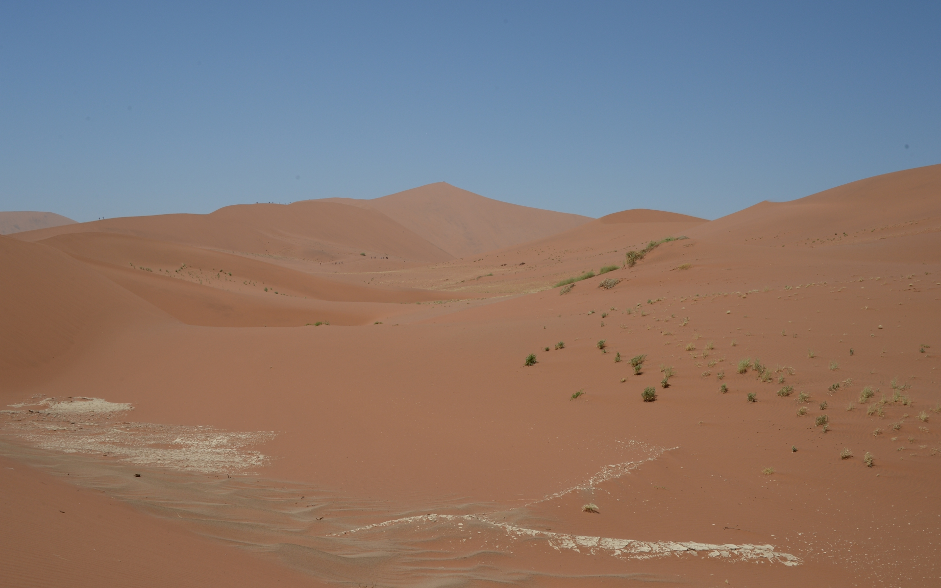 Namibia_Sossusvlei_Deadvlei_38